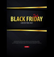 black friday sale poster or flyer discount vector image vector image