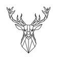 low poly deer design vector image vector image