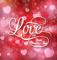 Valentines love background vector image vector image