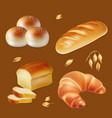 bread realistic icons set vector image