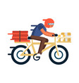courier with pizza boxes on bicycle vector image