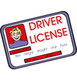 drivers licence with male icon vector image vector image