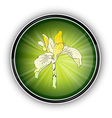 flower on the round symbol vector image vector image