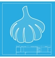 Garlic simple sign White section of icon on vector image vector image
