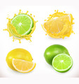 lemon and lime juice fresh fruit 3d icon vector image vector image