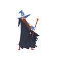 male sorcerer with magic staff bearded wizard vector image vector image