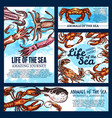 sea life posters of sketch fish animals vector image