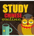 Study Chinese on-line banner for the web school vector image vector image