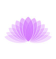violet lotus flower icon logo on white background vector image