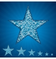 blue star with elements of sequins vector image