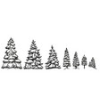 christmas trees in snow sketch collection of vector image vector image