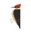 red head woodpecker bird geometric flat icon vector image vector image