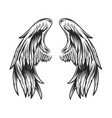 vintage angel wings template vector image vector image