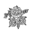black and white drawing of a rose tattoo vector image vector image
