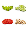 design of burger and sandwich icon vector image