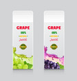 grape juice drink carton box packages vector image vector image