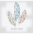 Vintage hand drawn feather vector image vector image