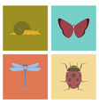 assembly flat bug snail butterfly vector image