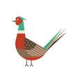 common pheasant bird geometric icon in flat vector image vector image