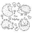 four cute hedgehogs vector image vector image