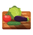 fresh cabbage tomato cucumber eggplant on board vector image vector image