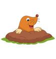 of cartoon mole vector image vector image