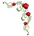 rose border vector image