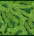 seamless pattern with green fir tree branch vector image