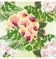 seamless texture yellow and white orchid vector image vector image