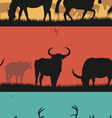 Set of with horses bulls and deer vector image