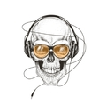 skull listening a music in headphones vector image vector image