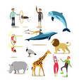 flat icons set of dolphinarium circus and vector image vector image