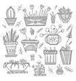 flower pots and house plants set vector image