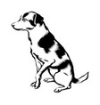 hand drawn dog isolated vector image