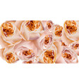 roses watercolor banner delicate flowers pattern vector image vector image