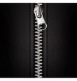 zipper black background vector image
