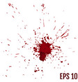 blood splatter painted isolated on white for vector image