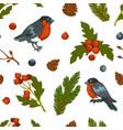 bullfinch bird and mistletoe seamless pattern vector image vector image