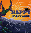 Halloween theme with spider web vector image vector image