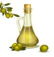 Olive oil bottle vector image vector image