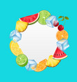 round fruit frame with ice cubes pineapple vector image vector image