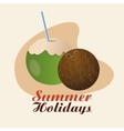 Summer design Holidays icon Colorfull vector image