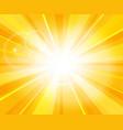 sun beams pattern vector image