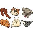 Cartoon funny dogs heads set vector image