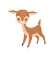 cute badeer lovely forest fawn animal vector image vector image