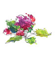 apple blossoms vector image vector image