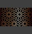 dark moroccan traditional rich minimalist black vector image