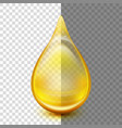 golden oil droplets eps 10 vector image