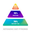 ketogenic diet pyramid keto healthy diet protein vector image