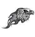 monochromatic eagle head with flames vector image vector image